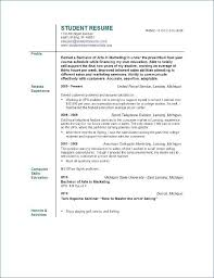 Objective Summary For Resume Unique Customer Service Resume Objective Or Summary From Resume Summary For