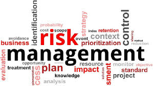 risk management assignment help in assignment writing  risk management assignment help in