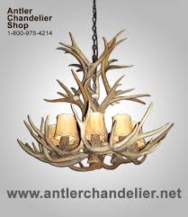 on today antler chandelier