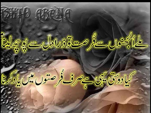 urdu friendship shayari in english