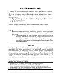 sample resume summary statements sample resume summary statements samples of resume summary