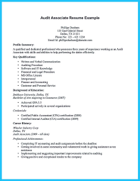 Internal Auditor Resume Sample Objective Example Director Of Audit