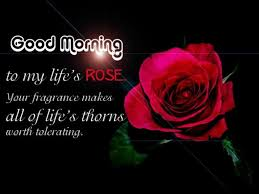 a message from the wishgoodmorning