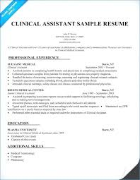 Executive Assistant Resume Samples Resume Example