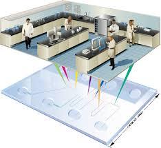Lab On A Chip Loc Pcr Lab On Chip Pcr
