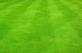 grass soccer field. Fine Grass 39697a0673e7ef0212a5d18a2f7c52b6_grassfieldclipartdromhfjsoccergrass Fieldclipart_17121121 Throughout Grass Soccer Field D