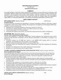 Sample Insurance Underwriter Resume Best Of Insurance Agent Resume