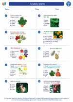 Parts of a plant worksheets, label the plant, science worksheets. All About Plants First Grade Science Worksheets And Answer Keys Study Guides And Vocabulary Sets
