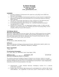 Resume Of Programmer Analyst Professional Resume Templates