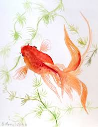 goldfish original watercolor painting 8 x 10 by originalonly 22 00