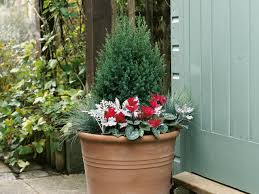10 Ideas For Using Large Garden Containers  HGTVContainer Garden Plans Flowers