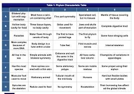 Animal Phylum Characteristics Chart Phylum Table Related Keywords Suggestions Phylum Table