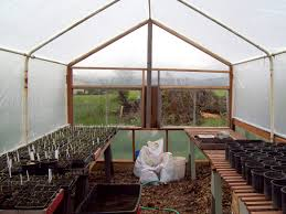 South end is all glass (two sliding windows) and greenhouse plastic for  maximum light.