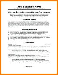 Professional Summary Examples For Resume For Customer Service Zromtk Amazing Resume Professional Summary Examples
