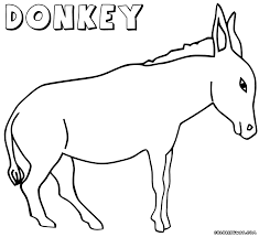 Small Picture Download Coloring Pages Donkey Coloring Pages Donkey Coloring
