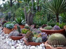 Small Picture 68 best Mexican Theme Knights Garden Ideas images on Pinterest