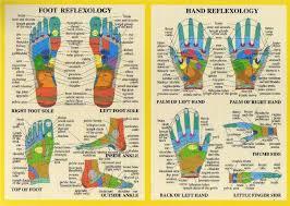 Hand And Foot Reflexology A4 Chart