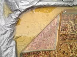 pet urine removal in wool rugs synthetic rugs is our specialty karastan rug cat urine treatment