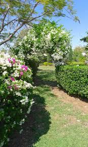 Download Victorian Style Gardens  Garden DesignRomantic Cottage Gardens