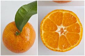 Mandarin Tangerines A Guide To Mandarin Oranges 11 Types Of Citrus For The