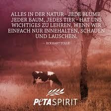 Peta Spirit Alle Zitate Mit Bilder Von Peta Spirit Auf Einem Blick