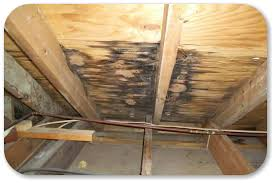 repair hole in roof plywood. Wonderful Hole Roof Repair Leak For Repair Hole In Roof Plywood M