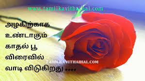 I Love My Life Quotes In Tamil Best Quotes For Your Life