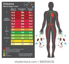 Glucose Levels Charts Stock Illustrations Images Vectors