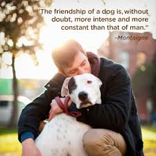 Quotes About Dogs And Friendship Inspiration Download Quotes About Dog Friendship Ryancowan Quotes