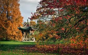 rhs garden wisley england wesley england botanical garden weather garden furniture tree autumn autumn furniture