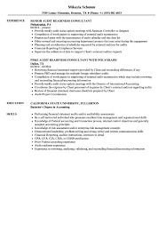 Audit Readiness Consultant Resume Samples Velvet Jobs
