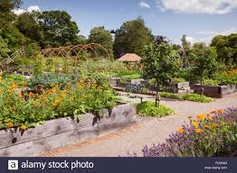 English Kitchen Garden Kitchen Vegetable Garden Raised Beds Stock Photos Kitchen