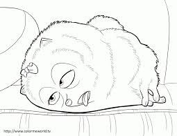Secret Life Of Pets Drawing At Getdrawingscom Free For Personal