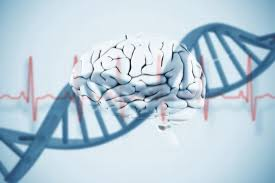 Bipolar disorder has genetic links to autism  study shows     Science Daily