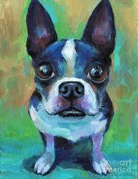 boston terrier painting adorable boston terrier dog by svetlana novikova