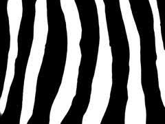 Zebra Patterns Extraordinary Zebra Patterns Bootkidz
