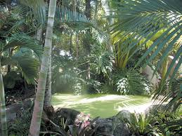A misty green pool, centerpiece of the cloud forest garden; to the left,