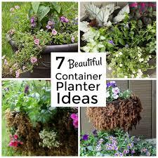 7 beautiful container gardening ideas
