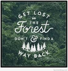 Forest Quotes New Get Lost In The Forest