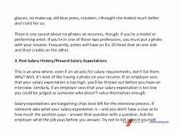 Salary Expectations Cover Letter Costumepartyrun