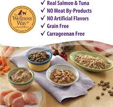 Wellness Healthy Indulgence Morsels With Salmon Tuna In Savory Sauce Grain Free Wet Cat Food Pouches 3 Oz Case Of 24