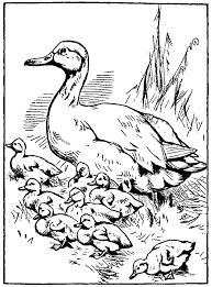 Small Picture Make Way For Ducklings Coloring Page Coloring Home