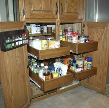 Pull Up Kitchen Cabinets Cabinet Kitchen Cabinet Pull Out Shelves