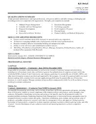 Remarkable Resume Writing Summary Of Skills In Professional