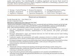 Stylish Executive Summary Resume Example Sumptuous Design Ideas
