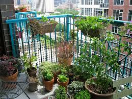 Apartment Patio Herb Garden
