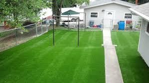 artificial turf yard. Artificial Grass. And Lawn In Turf Yard