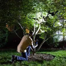 install landscape lighting choose landscape lights