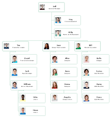 Chart Business Top 5 Small Business Organizational Chart Examples
