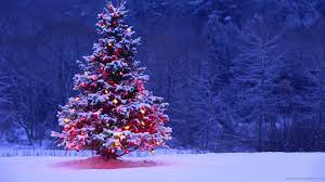 Christmas Trees Wallpapers - Top Free ...